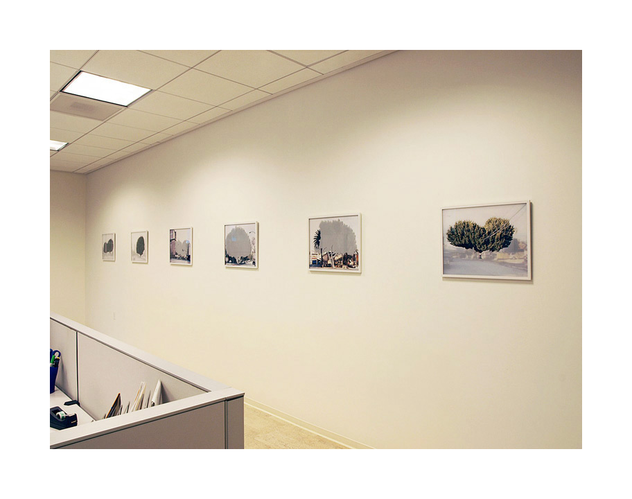 installation view at community partner, los angeles, ca, 2010