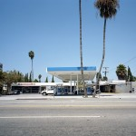 palm #32 [wilshire blvd. at n. stanley dr.]